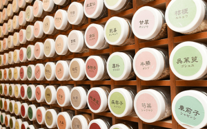 蕁麻疹に対する漢方医学の認識と漢方薬治療
