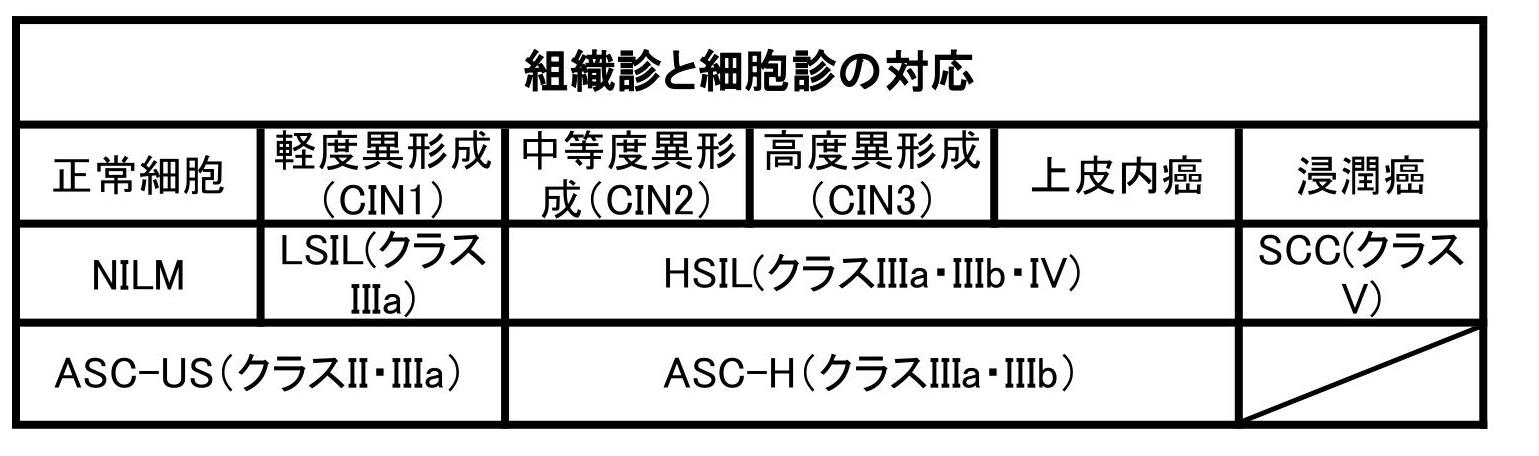 子宮頸部異形成症例報告|21歳、HSIL(Ⅲa)2か月漢方で改善