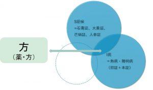 不明熱の症例における方証のアプローチ 図3