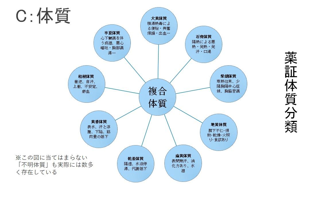 薬証体質分類法 図2