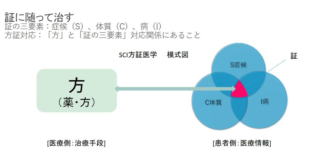 SCI方証医学の基本模式 図1